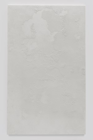 Salt and Dust, White V 鹽與塵,白色五號 by Michel Comte contemporary artwork