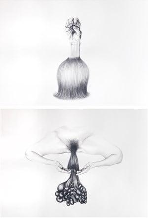 Self portrait by Patricia Piccinini contemporary artwork drawing