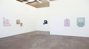 Contemporary art exhibition, Emily Hartley-Skudder, Germfree Adolescents at Jonathan Smart Gallery, Christchurch