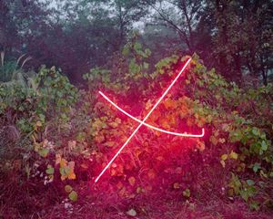 X by Jung Lee contemporary artwork