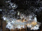 Biennale Of Sydney Annoucnces Major Donation