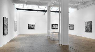 Contemporary art exhibition, Ana Mendieta, La tierra habla (The Earth Speaks) at Galerie Lelong & Co. New York, New York