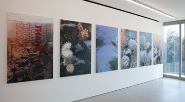 Contemporary art exhibition, Hugh Scott-Douglas, Thank You Thank You Thank You Thank You Thank You Thank You at Blum & Poe, Tokyo