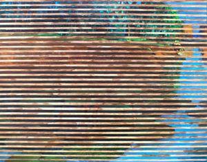 BLINDS: Waterbody by Chandraguptha Thenuwara contemporary artwork