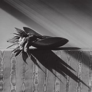 Tulips by Robert Mapplethorpe contemporary artwork