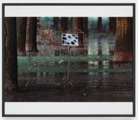 Der Jaguar kann niemals Seine Flecke verlieren, (The jaguar can never lose its spots) by Lothar Baumgarten contemporary artwork photography, print