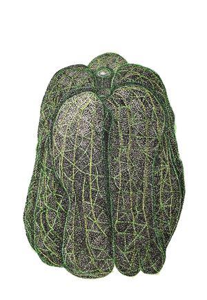 WfH Series - White Turnip - Papaya by Eddie Lui contemporary artwork