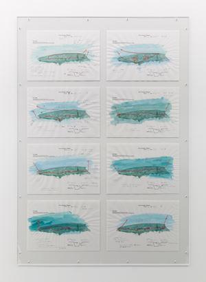Diving Log (Akitsushima) by Yukinori Yanagi contemporary artwork