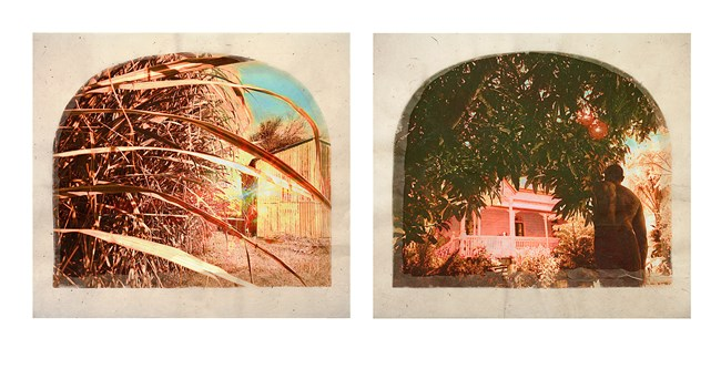Plantation (Diptych No. 6) by Tracey Moffatt contemporary artwork