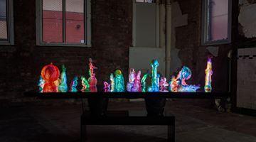 Contemporary art exhibition, Marco Giordano, To Disturb Somnolent Birds at The Modern Institute, Aird's Lane, Glasgow