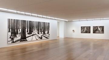 Contemporary art exhibition, NI Youyu, So Near Yet So Far 咫尺千里 at Perrotin, 50 Connaught Road Central, Hong Kong