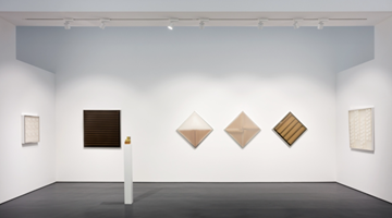 Contemporary art exhibition, Group Exhibition, Afinidades Eletivas at Esther Schipper, Berlin, Germany
