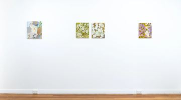 Contemporary art exhibition, Negin Dastgheib, Rising at Page Galleries, Wellington, New Zealand