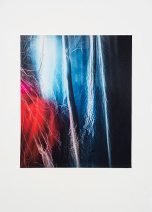 Untitled (3242) by Elisa Sighicelli contemporary artwork