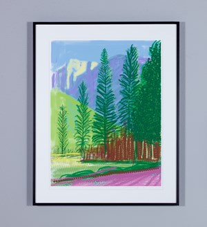 'Untitled No.12' from 'The Yosemite Suite' by David Hockney contemporary artwork