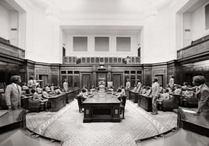 Majority Rule, Senate by Michael Cook contemporary artwork
