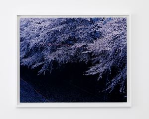 Nakameguro, Tokyo by Chikashi Suzuki contemporary artwork