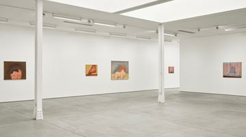 Contemporary art exhibition, Co Westerik, body and landscape at Sadie Coles HQ, Kingly Street, London