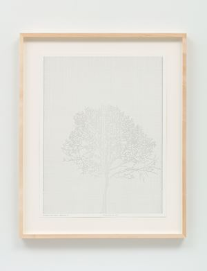 Numbers and Trees: Drawing 37 by Charles Gaines contemporary artwork works on paper
