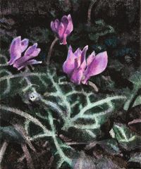 Wild Flowers – Cyclamen by Anita Fricek contemporary artwork painting, works on paper