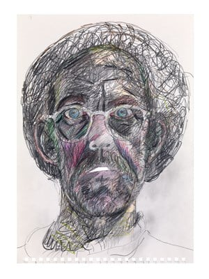 Work No. 2965 Self portrait in a hair net with mouth open by Martin Creed contemporary artwork