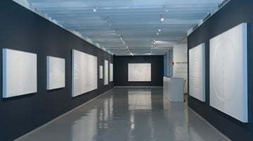 Contemporary art exhibition, Udo Nöger, Painting with Light at Sundaram Tagore Gallery, Chelsea, New York, USA