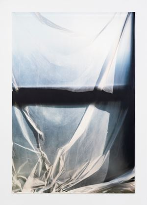 Untitled (1138) by Elisa Sighicelli contemporary artwork