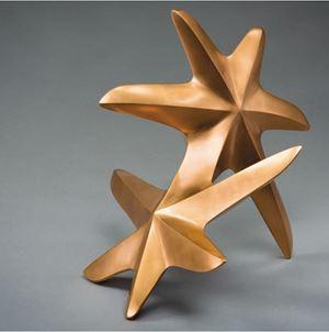 Rolling Seastar by Maximilian Verhas contemporary artwork