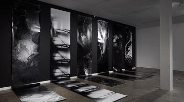 Contemporary art exhibition, Joyce Campbell, As it falls at Two Rooms, Auckland
