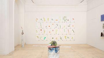 Contemporary art exhibition, Lois Weinberger, field work at Galerie Krinzinger, Vienna