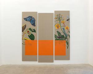 Musa Paradisiaca I by Gabriela Bettini contemporary artwork