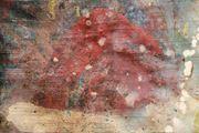 Fall by Cristina Canale contemporary artwork 4