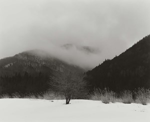 An eventual saturation by Toshiya Murakoshi contemporary artwork