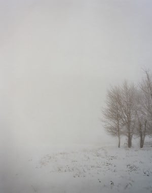 #7412 by Todd Hido contemporary artwork