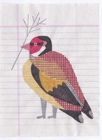 05 - Chardonneret élégant by Jochen Gerner contemporary artwork works on paper, drawing