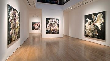 Contemporary art exhibition, Philippe Cognée, Carne dei fiori at Templon, 28 Grenier Saint-Lazare, Paris