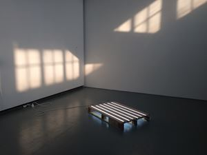 Sunlight Under the Sunlight by Tant Yunshu Zhong contemporary artwork