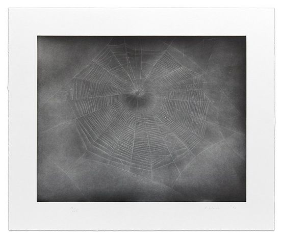 Vija Celmins, Untitled (Web 3) (2002). 1-color etching with aquatint and drypoint. Edition of 65. Courtesy Krakow Witkin Gallery.