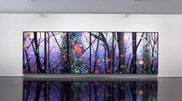 Contemporary art exhibition, Tim Maguire, Photosynthesis at Tolarno Galleries, Melbourne