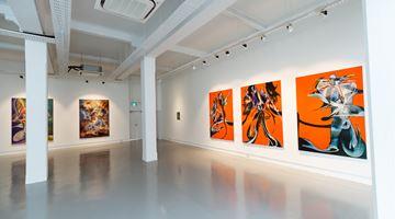 Contemporary art exhibition, Ruben Pang, SWALLOW SHADOW at Chan + Hori Contemporary, Singapore
