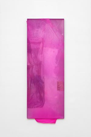 Narcisse 1 by Mimosa Echard contemporary artwork