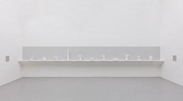 Contemporary art exhibition, Marcus Coates, Near-Life Experience at Kate MacGarry, London