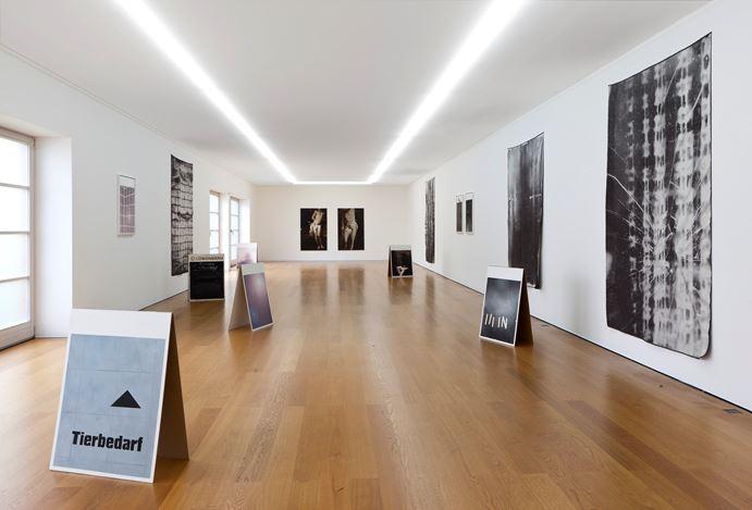 Exhibition view: Florian Süssmayr, zeigt,Galerie Rüdiger Schöttle, Munich (29 May–31 July 2020). Courtesy Galerie Rüdiger Schöttle. Photo: Wilfried Petzi.