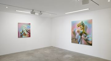 Contemporary art exhibition, Bernhard Martin, Do's And Don'ts And Want's And Won'ts at Choi&Lager Gallery, Cologne, Germany