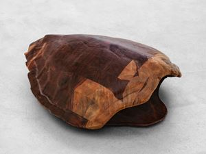 Tartaruga by Mirko Baselgia contemporary artwork