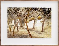 Postcards from Africa: Head loading cacao by Sue Williamson contemporary artwork works on paper