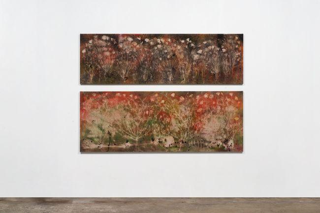 Super Bloom, Ancient Earth (Mojave Desert) by Sam Falls contemporary artwork