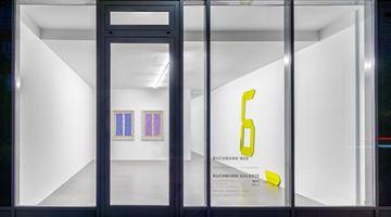 Contemporary art exhibition, Tatsuo Miyajima, Tatsuo Miyajima at Buchmann Galerie, Buchmann Galerie, Berlin