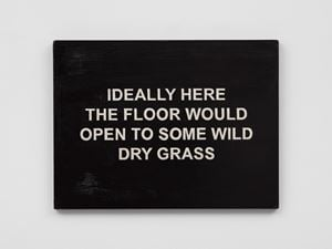 IDEALLY HERE THE FLOOR WOULD OPEN TO SOME WILD DRY GRASS by Laure Prouvost contemporary artwork