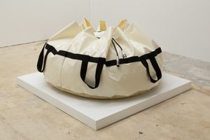 Untitled (Bag) by Aurélien Martin contemporary artwork